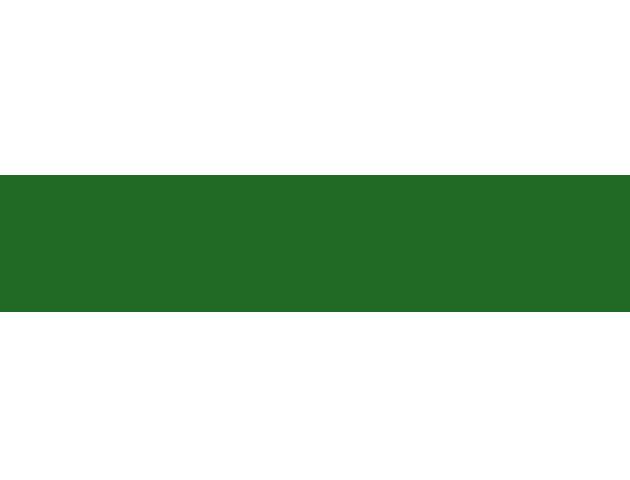 Composição da ACEV